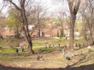 Panoramatický pohled na park shora